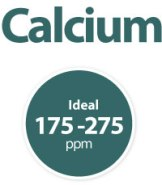 calcium-hardness-range-swimming-pool