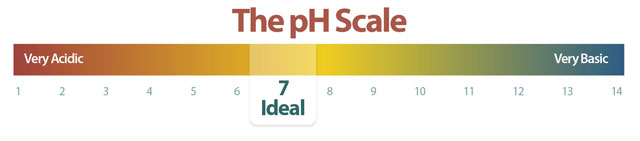 the-ph-scale-swimming-pool.jpg
